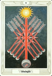 9 of Wands Thoth