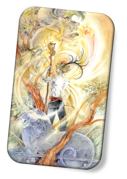 meaning of the King of Wands Shadowscapes Tarot