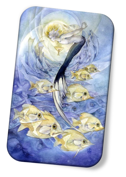The meaning of the Nine of Cups Shadowscapes Tarot